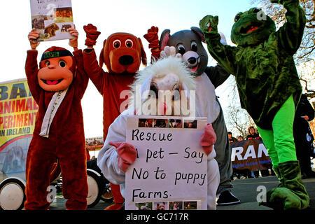 Animal Welfare-Aktivisten - Stockfoto