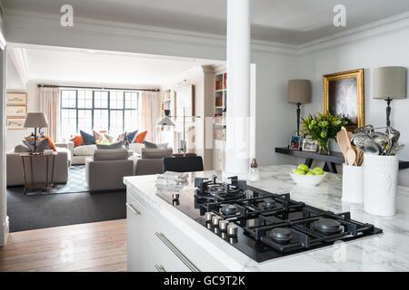 Offene moderne Küche, entworfen von Stephanie mahnen im Raum mit Crittal windows - Stockfoto