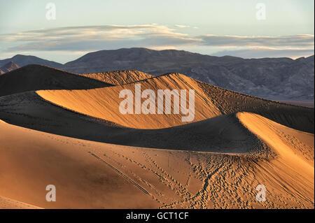 Morgensonne auf den Mesquite flache Sanddünen, Death Valley Nationalpark, Kalifornien. - Stockfoto
