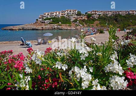 Strand von Cala Murada, Mallorca, Balearen, Spanien - Stockfoto