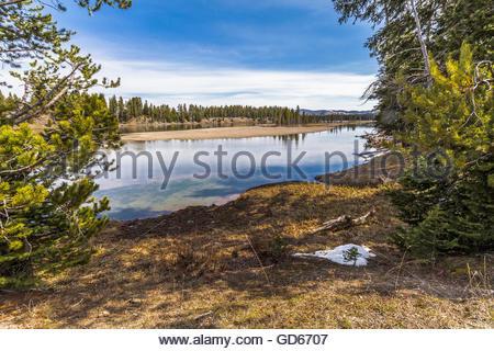 Ein Blick aus dem Bereich der Fischerei-Brücke über den Yellowstone River im Yellowstone National Park, USA... - Stockfoto