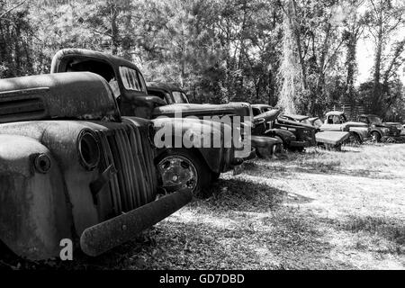Crawfordville, Florida - USA. Mai 2016 - rostige alte Calssic LKW und Autos am Straßenrand aufgegeben - Stockfoto