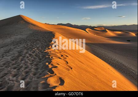 Frühen Morgenlicht über Mesquite flache Sanddünen, Death Valley National Park, Winter - Stockfoto