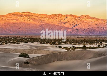 Mesquite flache Sanddünen im frühen Morgenlicht, Death Valley, USA - Stockfoto