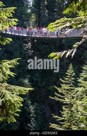 Capilano Suspension Bridge, Vancouver, Britisch-Kolumbien, Kanada. - Stockfoto