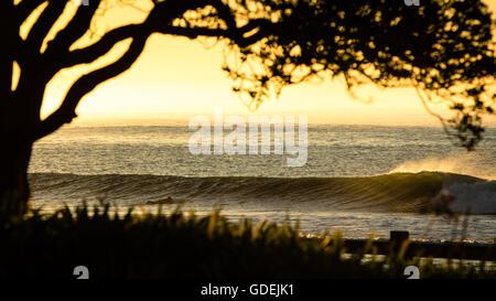 Silhouette der Surfer paddeln heraus um zu fangen, eine Welle, Malibu, California, Amerika, USA - Stockfoto