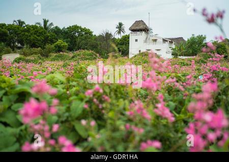 Tranquebar, auch bekannt als Tharangambadi ist ein aus dem 17. Jahrhundert niederländische Handel Vorposten Stadt - Stockfoto