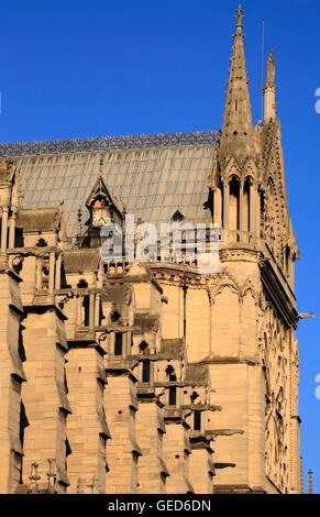 Die Südseite der Notre-Dame De Paris, Paris, Frankreich, Europa - Stockfoto