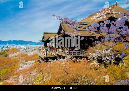 Kiyomizu-Dera Tempel während der Kirschblüte in Kyoto Japan - Stockfoto