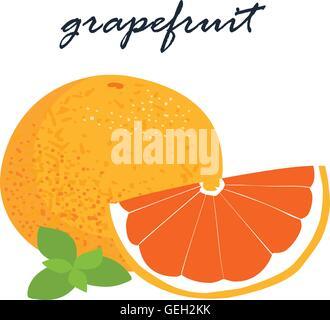 frische Grapefruit auf weißem Hintergrund Vektor-illustration - Stockfoto