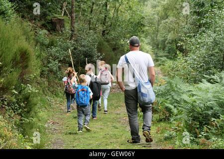 Familie zu Fuß durch Wald - Stockfoto
