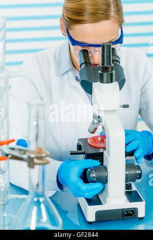 Wissenschaftler untersuchen Lösung in Petrischale in einem Labor - Stockfoto