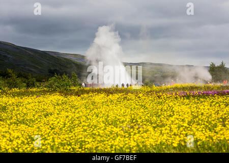 Strokkur Geysir Hot Spring Area, Tüllen Wasser 30 Meter (100 ft), South West Island, Golden Circle tour - Stockfoto