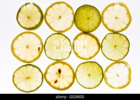 Zitrone und Limone Früchte. 12 Scheiben Zitrone und Limette Obst, auf weißen Hintergrund angeordnet. Gegenlicht. - Stockfoto