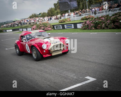 1964-AC Cobra, Goodwood Revival 2014, Rennsport, Oldtimer, Goodwood, Chichester, Sussex, England, Großbritannien - Stockfoto