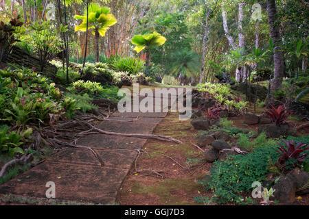 Pfad in Na Aina Kai botanischen Gärten, Kauai, Hawaii - Stockfoto