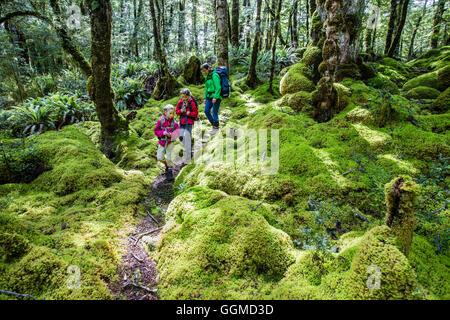 Zwei Mädchen und eine Frau Wandern durch Farne im Regenwald von Fjordland am Lake Manapouri, Hope Arm, Südinsel, - Stockfoto
