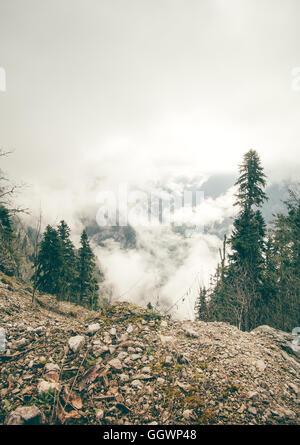 Nadel-Wald mit bewölkten Kaukasus Berge Landschaft launische Wetter ...