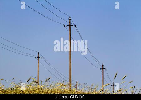 Telefonmast und Drähte in einem Feld in England UK Stockfoto, Bild ...