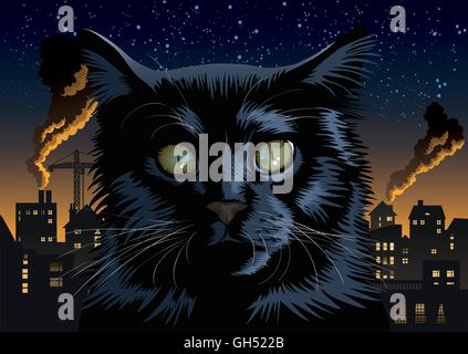 Städtische schwarze Katze in der Stadt in der Nacht. - Stockfoto