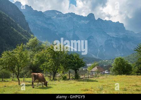 Blick über das Dorf Theth mit den albanischen Alpen, Radohima-massiv in den Hintergrund, Nordalbanien. - Stockfoto