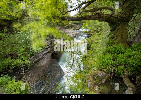 Sgwd Clun-Gywn Wasserfall, Brecon-Beacons-Nationalpark, Wales, UK