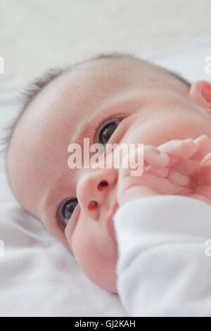 Kopfschuss von Baby Boy liegend - Stockfoto