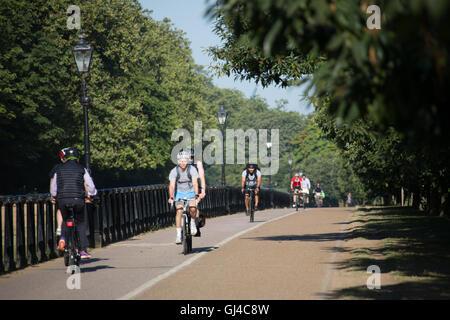 London, UK. 12. August 2016. Radfahrer, die Fahrt zur Arbeit durch den Hyde Park in London Credit: Roger Garfield/Alamy - Stockfoto