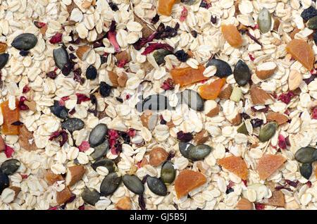 hausgemachtes Müsli mit getrockneten Früchten und Samen - Stockfoto