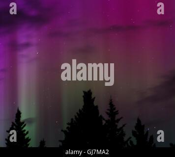 Säulen der grünen Aurora Licht reichen bis in eine violette Aurora Nacht getrieben - Stockfoto