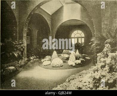 Die American Florist - eine wöchentliche Zeitschrift für den Handel (1901) - Stockfoto