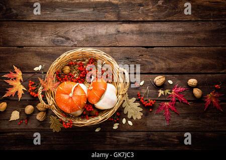 Herbst Hintergrund mit Laub und Kürbisse, Thanksgiving und Halloween Karte - Stockfoto