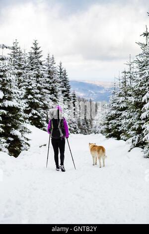 Frau Backpacker Reisen Wandern im weißen Winterwald mit Akita Hund. Wandern im Winterwald mit Hund. Freizeit Fitness - Stockfoto