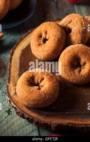 Hausgemachte gezuckerten Apple Cider Donuts mit Zimt