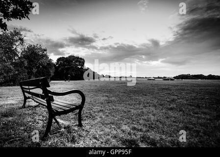 Einsame Parkbank in Clifton Abstiege in Bristol GB in Schwarz & Weiß - Stockfoto