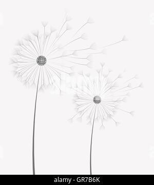 Vektor Löwenzahn Blume - Stockfoto