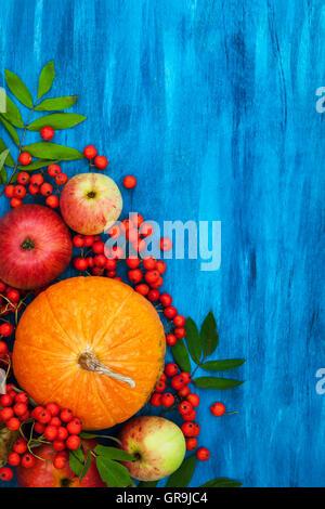 Herbstliche Stillleben mit Kürbisse, Äpfel und Vogelbeere auf blau, Top View, Textfreiraum - Stockfoto