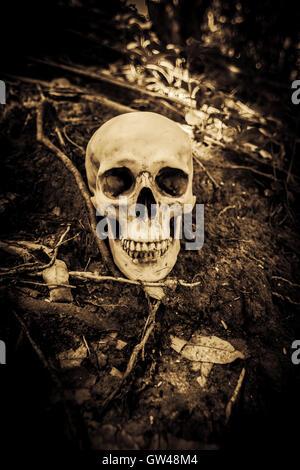 Menschlicher Schädel auf Ruinen, grauen Hintergrund für Halloween und Film Posterprojekt Concept - Stockfoto