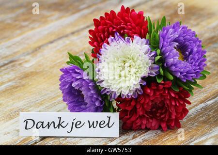 dank je wel danke in niederl ndischer sprache karte mit roten tulpen auf holzuntergrund