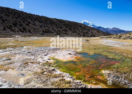 Anden Geysire. Junthuma-Geysire, durch geothermische Aktivität gebildet. Bolivien. Die Thermalbecken ermöglichen - Stockfoto