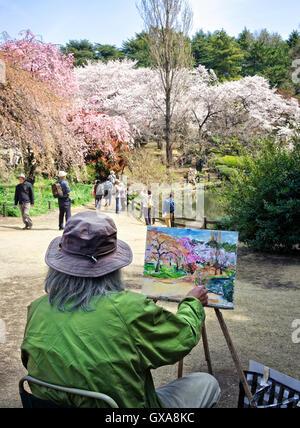 Japan, Insel Honshu, Kanto, Tokio, Frühling oder Hanami, Malerei an Kirschenblüten. - Stockfoto