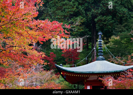 Japan, Insel Honshu, Kansai, Kyoto, am Daigo-Ji-Tempel. - Stockfoto