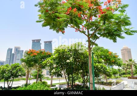 Skyline von West Bay Finanzviertel in Doha, Katar, vom grünen Sheraton park - Stockfoto