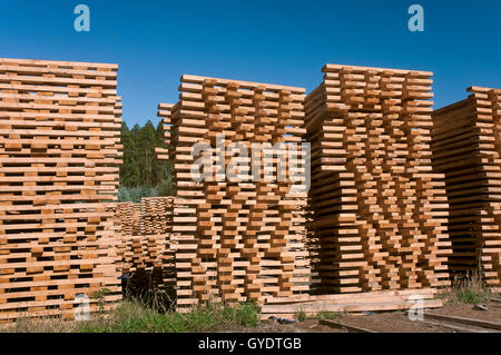 Holzindustrie, Morpeguite, Muxia, La Coruña Provinz, Region Galicien, Spanien, Europa - Stockfoto