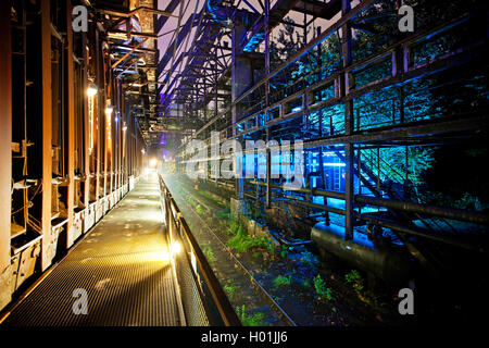 Beleuchtete Kokerei Hansa im Abendlicht, Extraschicht, die Nacht der Industriekultur, Deutschland, Nordrhein-Westfalen, - Stockfoto