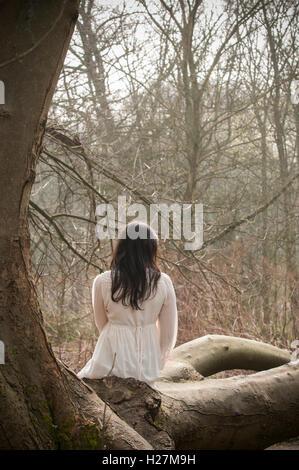 Rückansicht einer jungen Frau im viktorianischen Kleid saß auf dem Baum in der Landschaft - Stockfoto