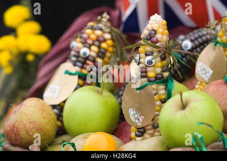 Gold Medaille tragen, Mais und Äpfel display - Stockfoto