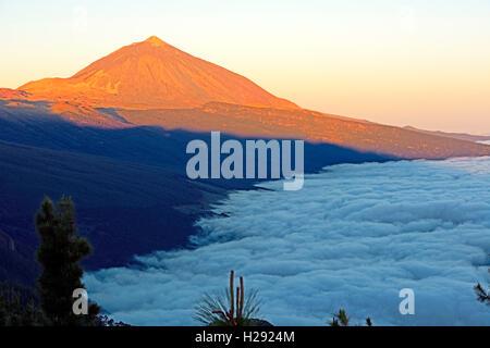 Sonnenaufgang auf dem Berg Teide, Handel Wind Wolken, Chipeque Viewpoint, Nationalpark Teide, Teneriffa, Kanarische - Stockfoto