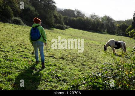 Frau zu Fuß auf ein Publc Wanderweg im Feld mit einem Pferd grasen, in der Nähe von Pentyrch, Cardiff North, South - Stockfoto