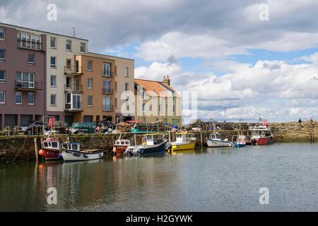 Angelboote/Fischerboote vertäut im ummauerten Hafen. Royal Burgh St Andrews, Fife, Schottland, Großbritannien - Stockfoto